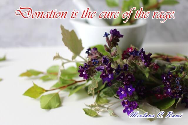 Rumi Quotes Images