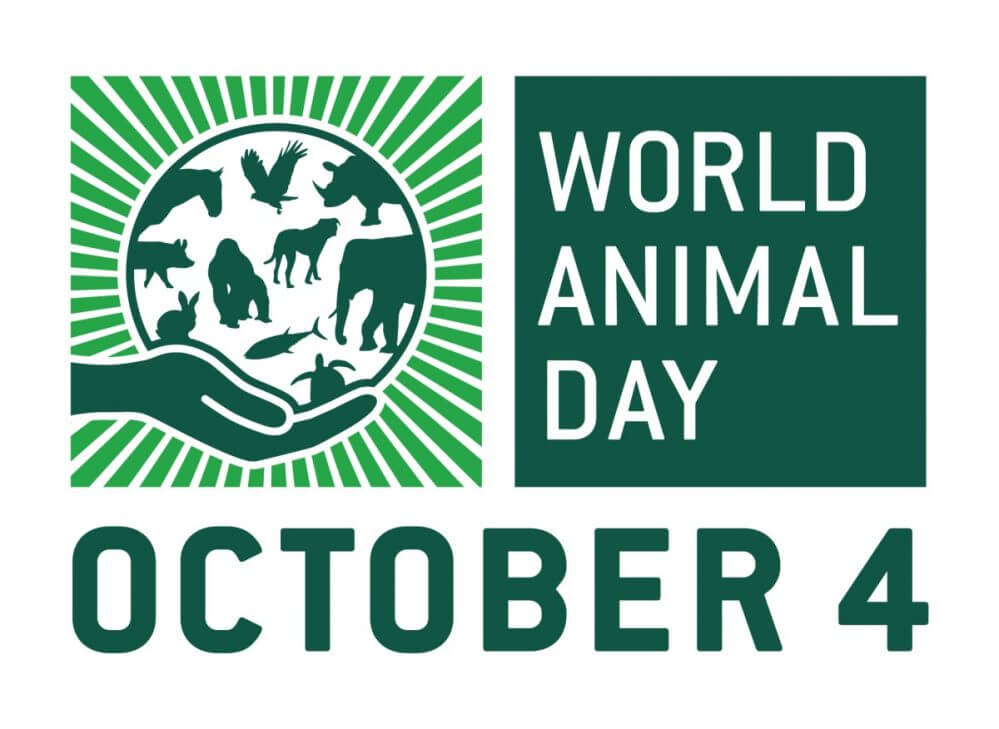 World Animals Day Messages